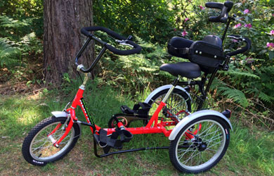 Fully-equipped young person's trike with rear steering⁄brake control for pushing